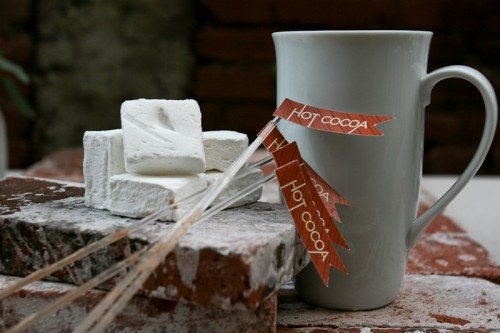 Marshmellows-and-hot-cocoa-drink-straws-500x333